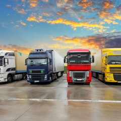 Catching Cliques in the Trucking Industry